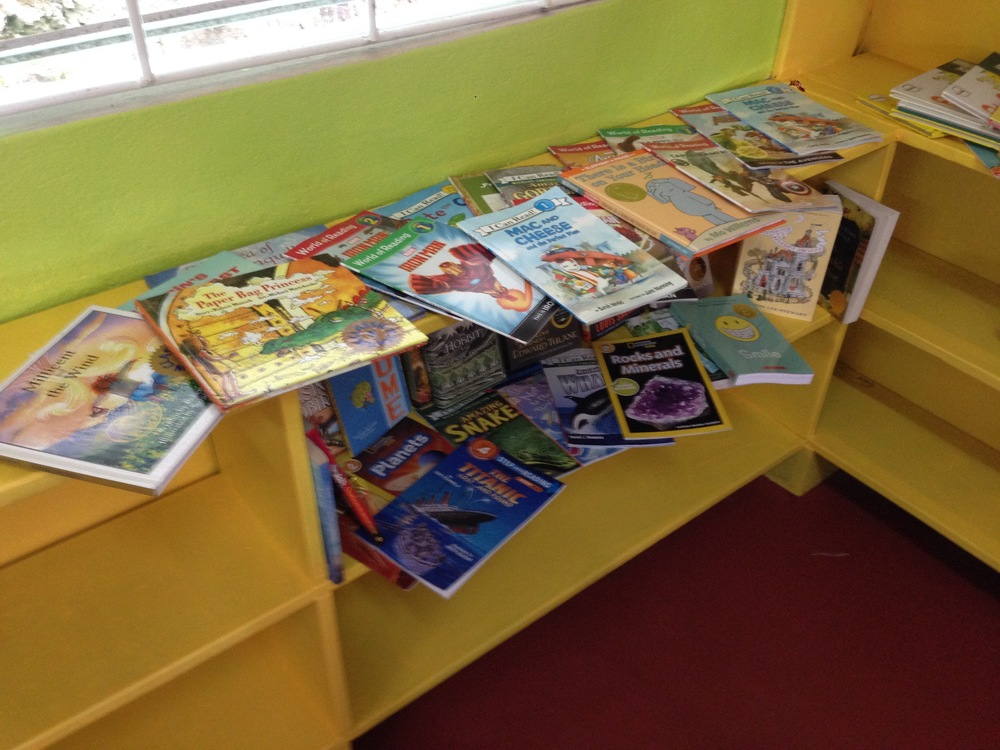 Books from the first book drive organized by my friend Meli Sheldon. Now, THESE are the kinds of books we want.