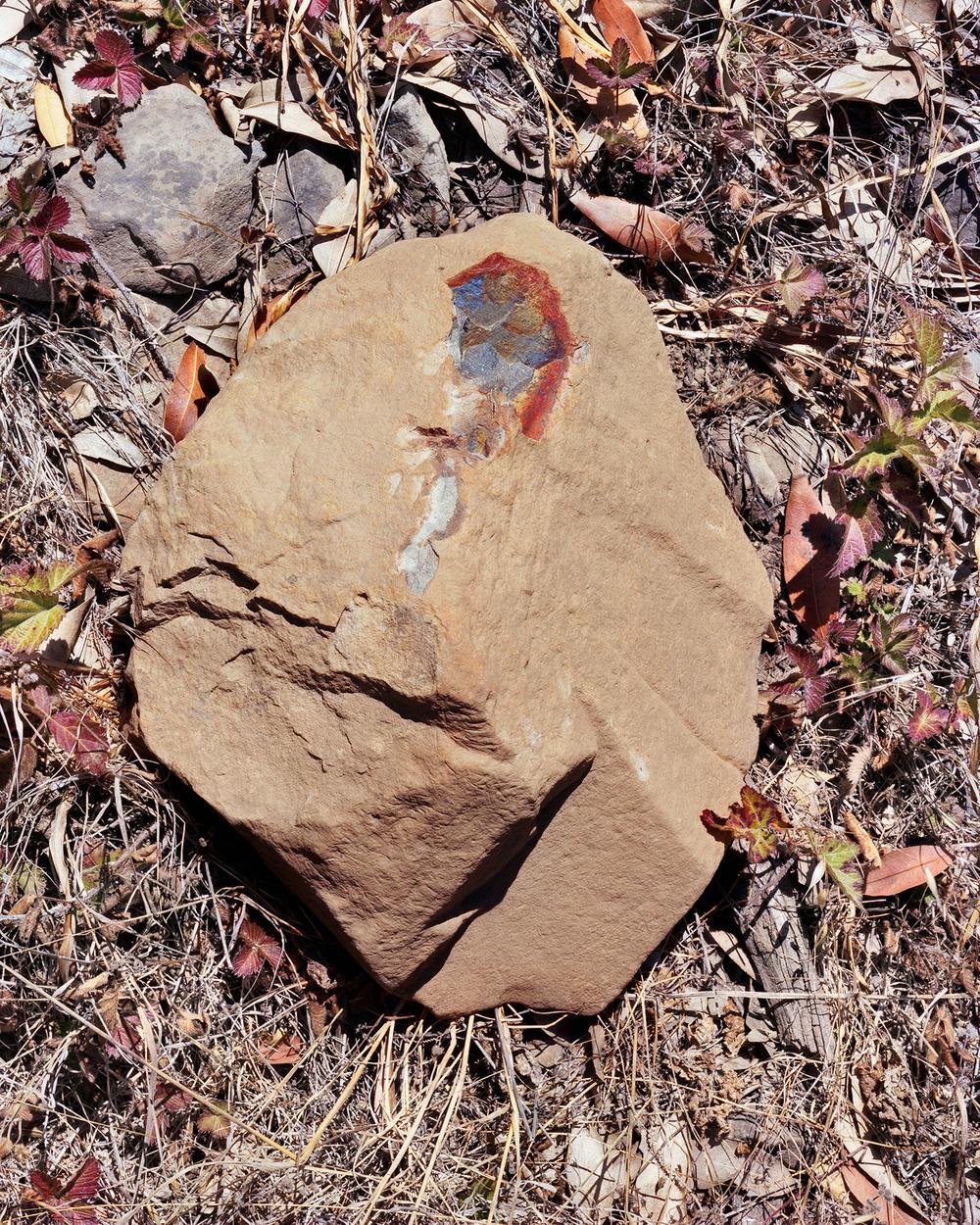 _bleedingrock_1900px.jpg