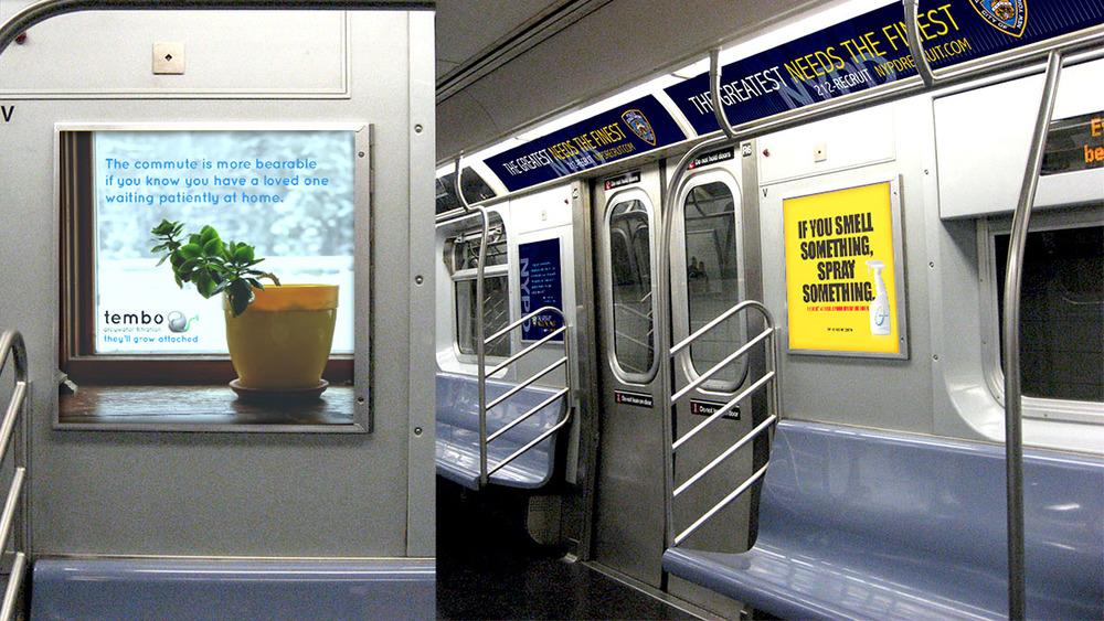 tembo_subway.jpg