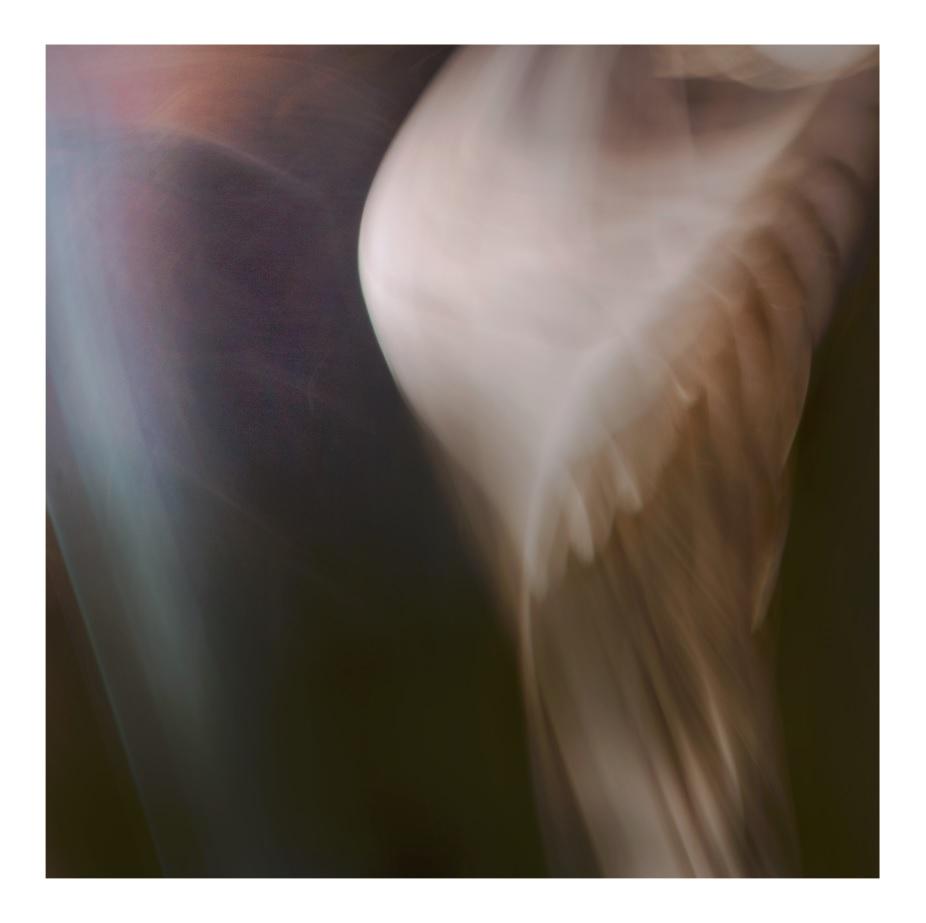 INDUSTRIA-1.jpg