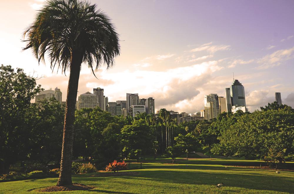 Botanical Gardens Brisbane.JPG