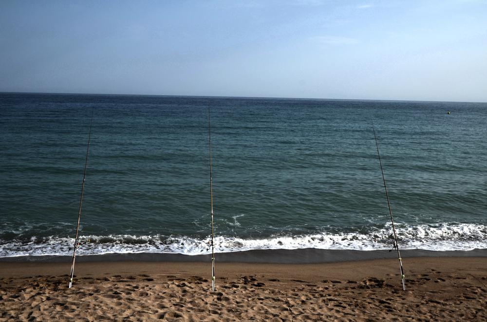 DNJ - FISHING.jpg