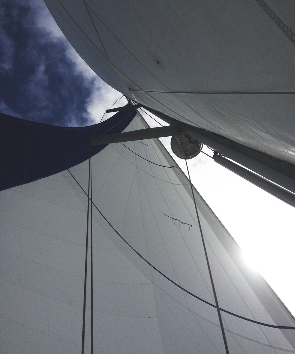 Set sails.JPG