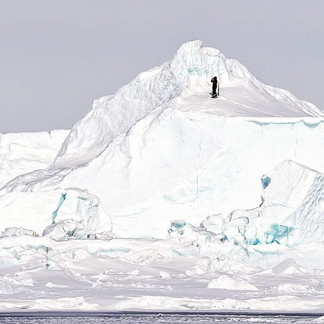 This pic is of Jonathan Awa, a wonderful young Inuit guide ( not as young as he looks ) , taking a look around from the top of an iceburg.  The bergs are so important to land-based tours. They are interesting to explore and climb, and offer a view of the surroundings ( when you're not flying in a hot air balloon ). More importantly, they are a source of fresh water. Who knows how old that water is, but it's fresh and it's the best way to make hot drinks.  #arcticadventures #discovernu #baffinsafari #iceberg #wanderlust . . . . . #destinationnunavut #nunavut #canada #canadianarctic #safari #camping #baffinisland  #expedition #nunavuttourism #canadatourism #arctictourism #flythearctic #discovercanada #seetheworld #bucketlist #bestofcanada #adventuretravel #northpole #travel #adventure #explorecanada #spiritofthearctic