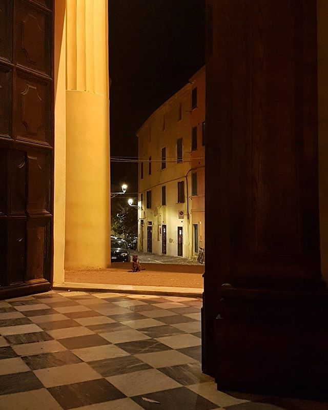 Quiet evening in Chiesa di San Francesco, only a cute cat was passing by #alghero #church #cat  #sardinia #italy #travelguide
