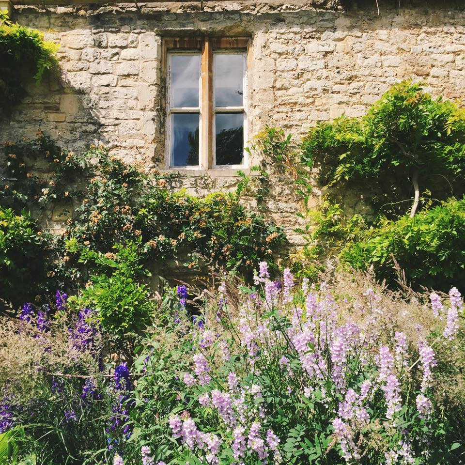 worcestercollegeoxford-flowers