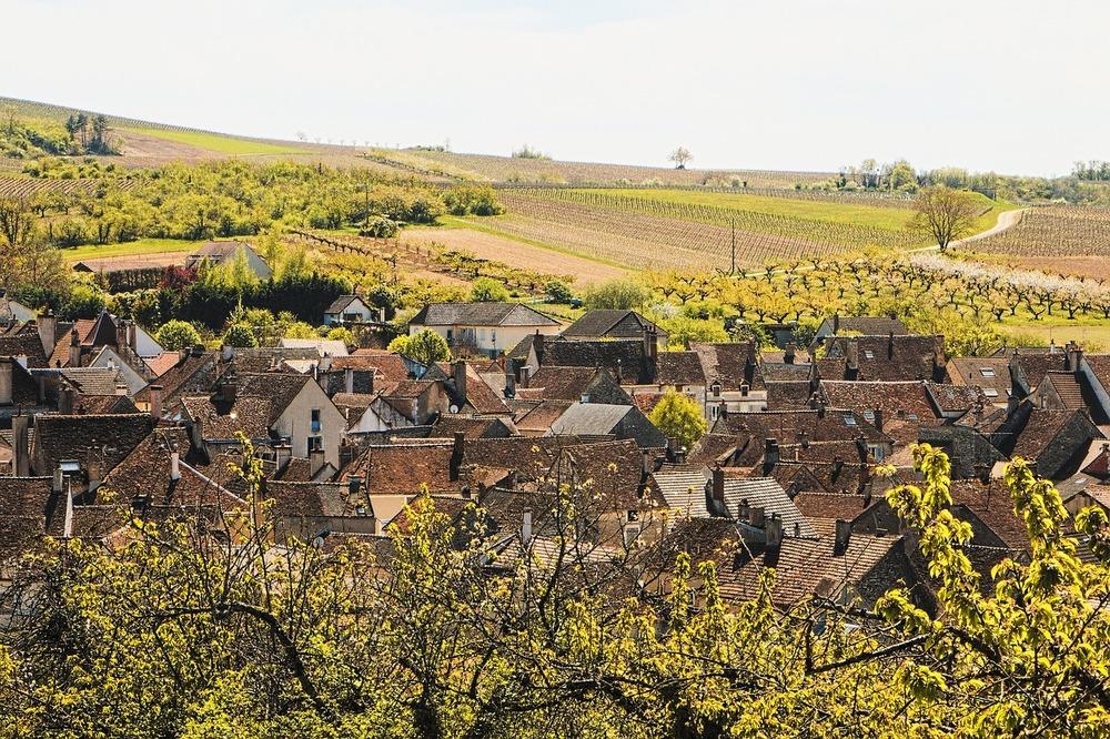 burgundy-736586_1280.jpg