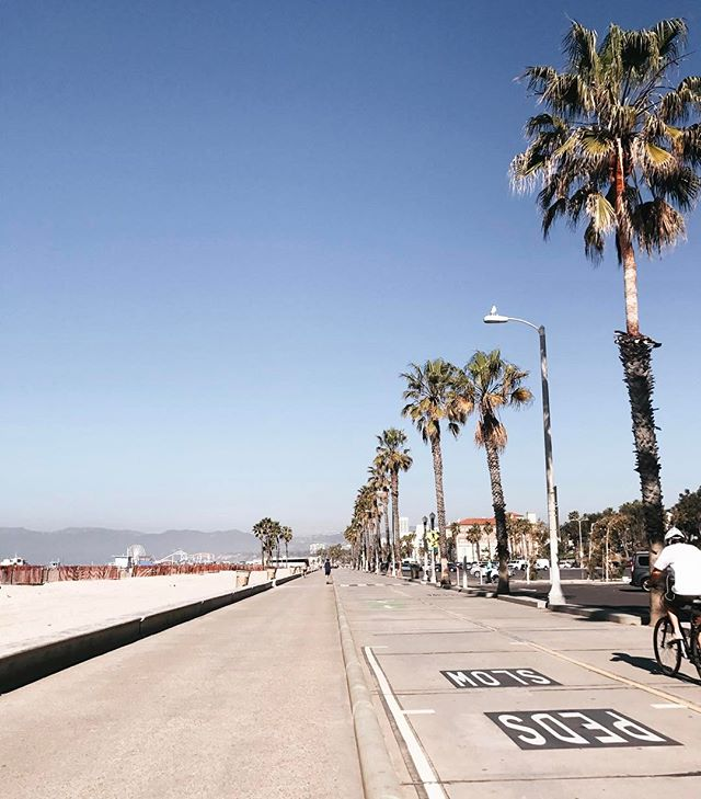 Morning run on the beach promenade. LA - SF: 1-0 😏 #stillloveyouSF #losangeles #santamonica #La #morningrun #vscocam #travel #california #venicebeach