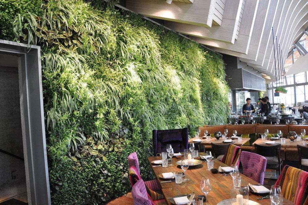 indoor-green-wall-vertiss-plus-bar_indoor-green-wall_home-decor_fetco-home-decor-christmas-decorators-coupon-code-blogs-discount-office-affordable-cheap-stores-traditional.jpg