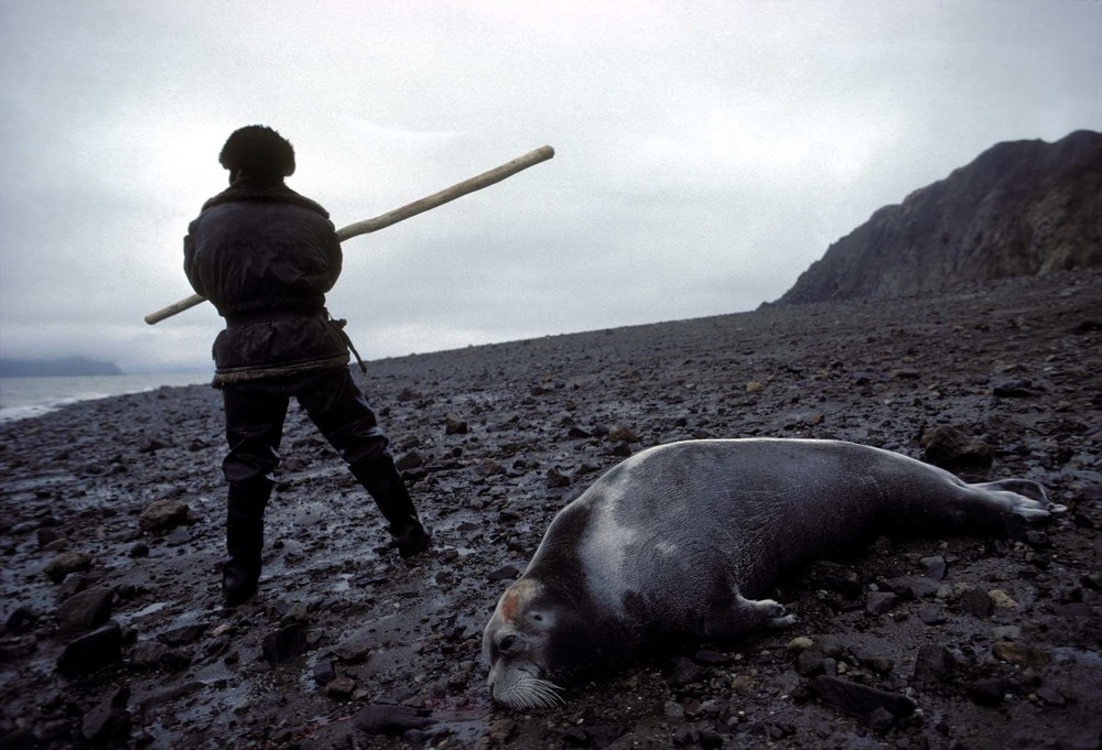 Seal Hunter