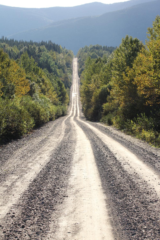Route traversant le Parc National de la Gaspésie, Qc