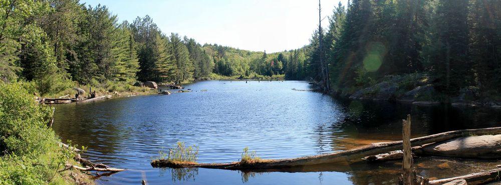 Algonquin Provincial Park, ON, Canada