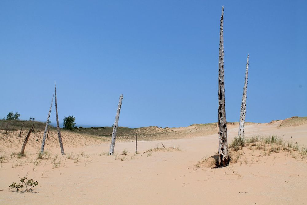 Sleeping Bear Point, Sleeping Bear Dunes National Lakeshore, MI, USA