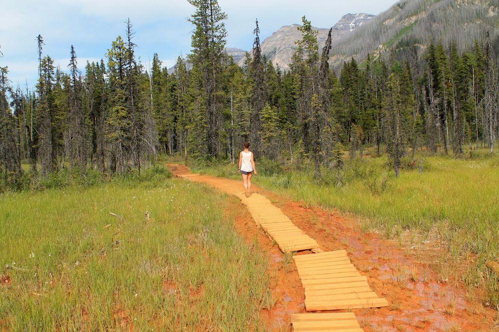 Paint Pots Trail, Kootenay National Park, AB, CA