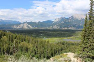 Pocahontas Trail, Jasper National Park, AB, CA