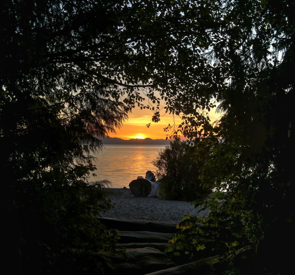 Kennedy Lake, Vancouver Island, BC, CA