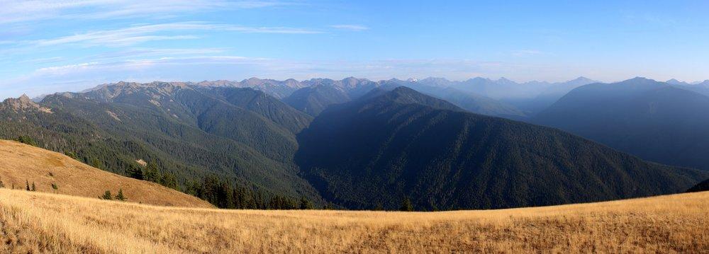 Hurricain Ridge, Olympic National Park, WA, USA