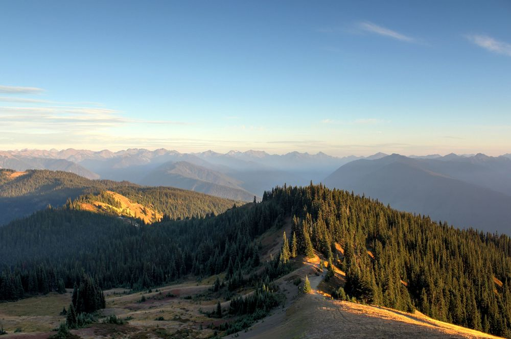 High Ridge Trail, Hurricain Ridge, Olympic National Park, WA, USA