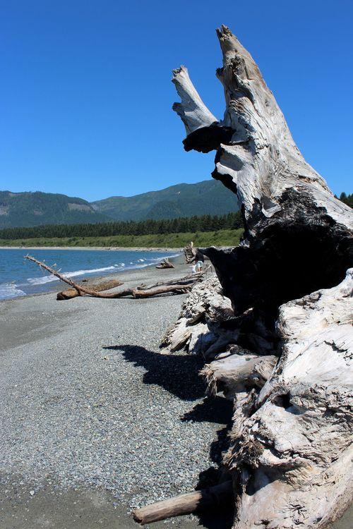 Port Renfrew, Vancouver Island, BC, CA
