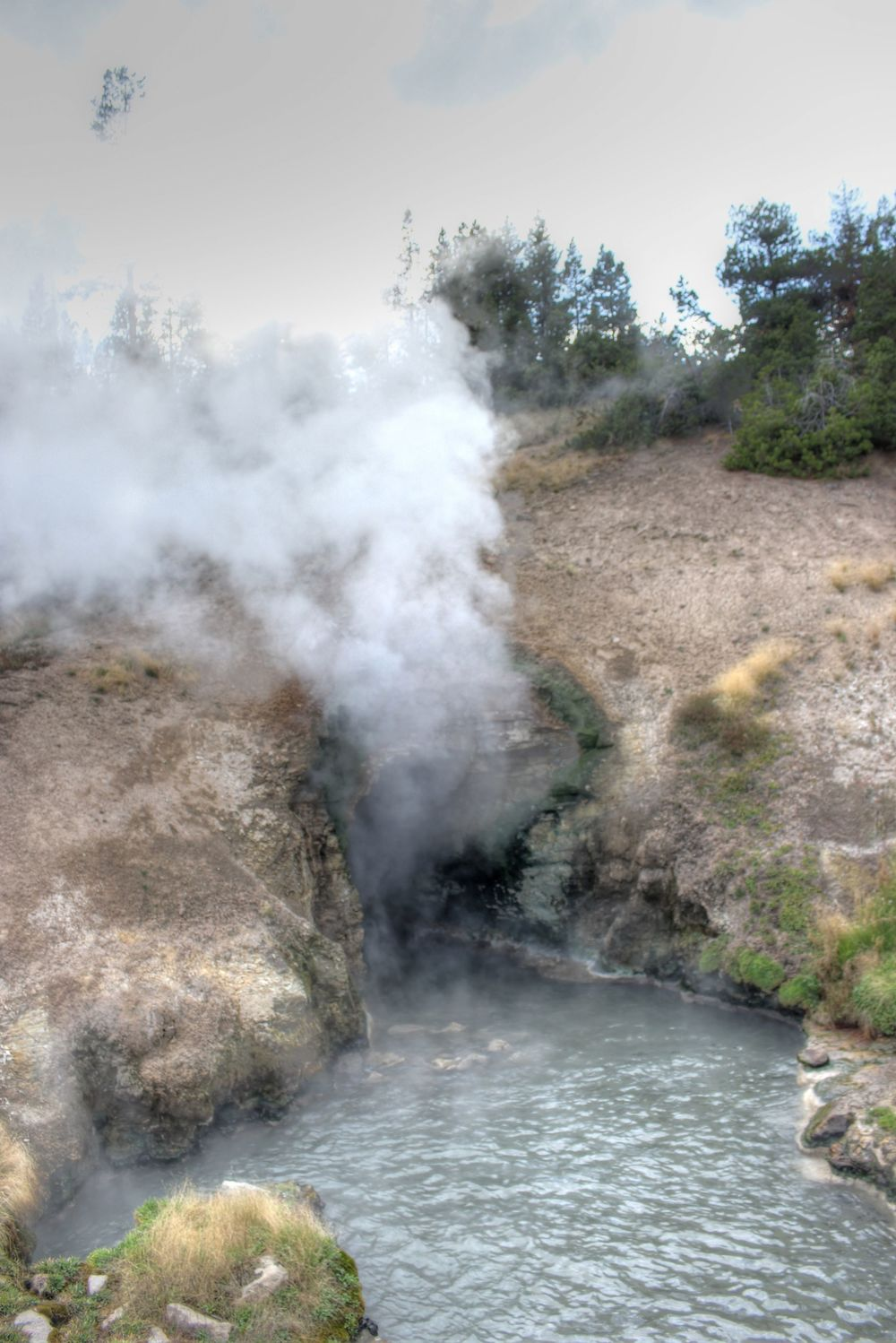 Dragon's Mouth Spring, Mud Volcano, Yellowstone National Park, WY, USA