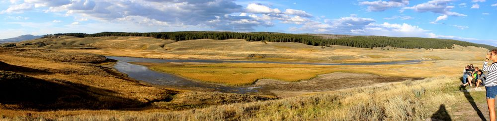Hayden Valley, Yellowstone National Park, WY, USA