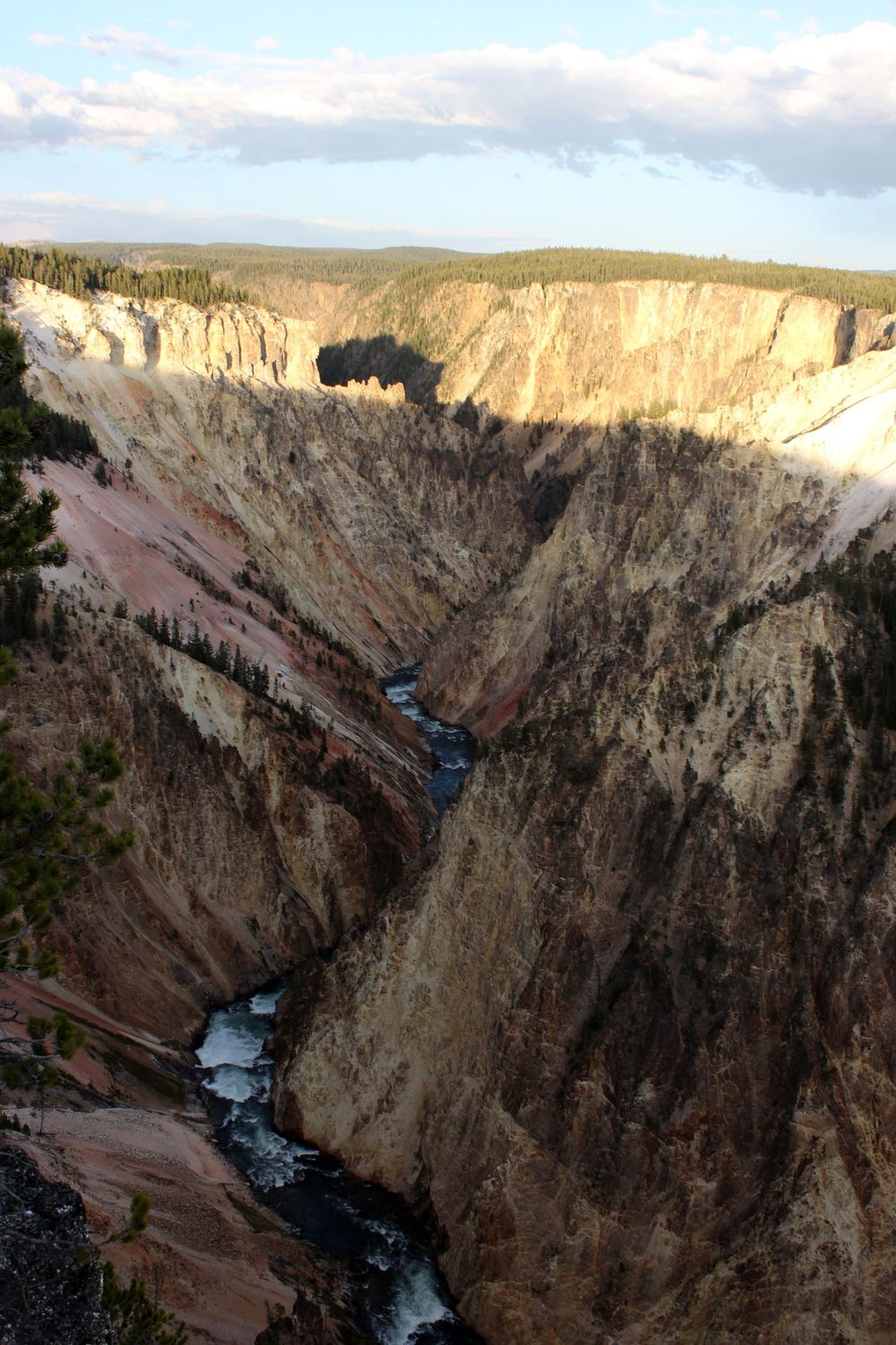 Canyon du Yellowstone, Yellowstone National Park, WY, USA