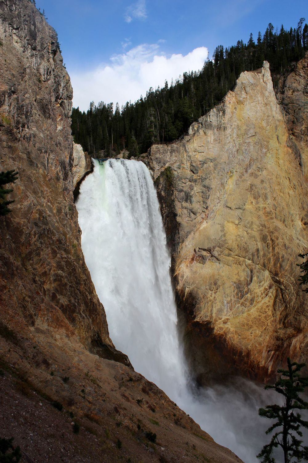 Les chutes du Canyon du Yellowstone, Yellowstone National Park, WY, USA