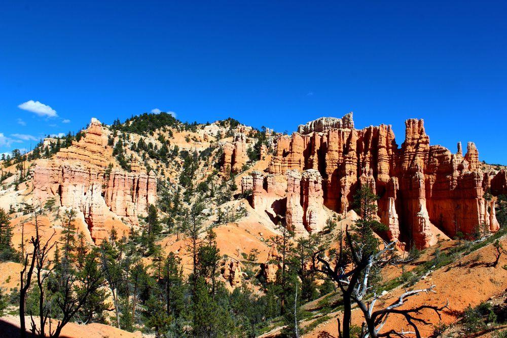 Fairyland Loop, Bryce Canyon National Park, Utah, USA