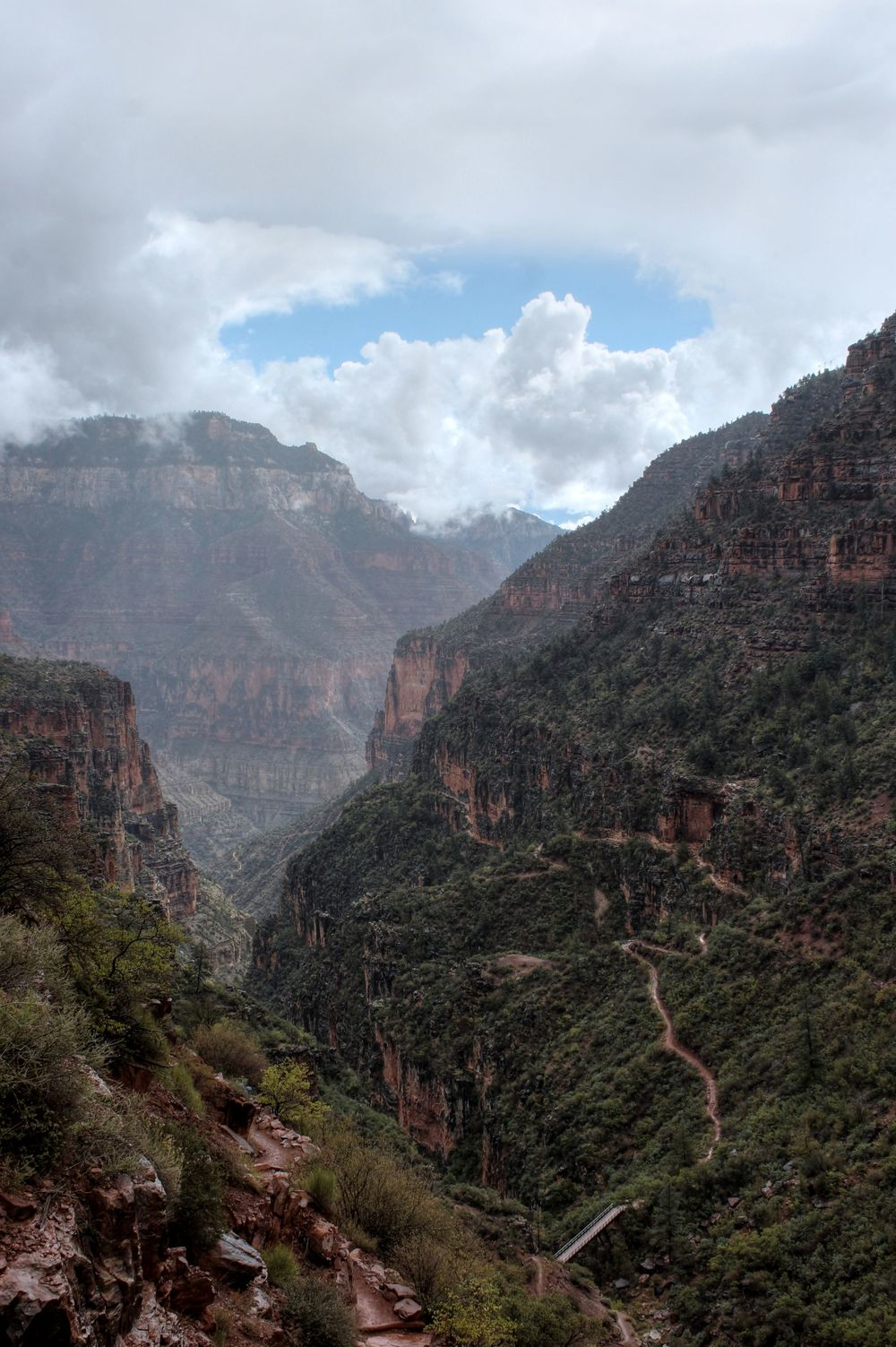 North Kaibab Trail, North Rim, Grand Canyon National Park, Arizona, USA