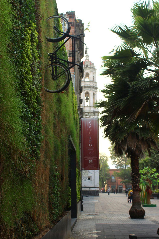 Mur végétale sur le mur d'une université, Mexico City, D.F, Mexique