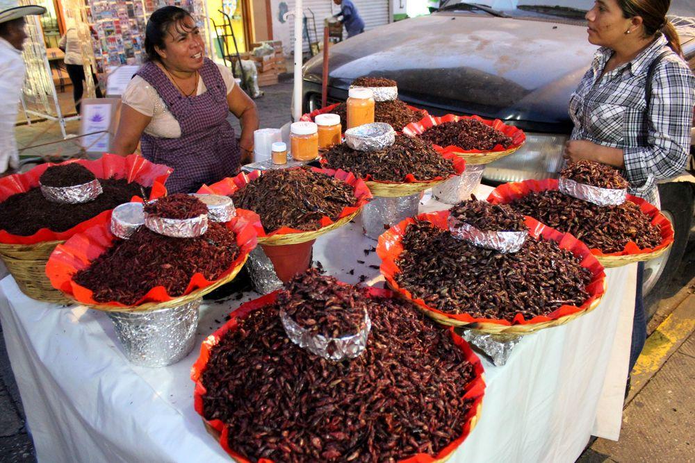 Stand de chapulines, marché de Oaxaca, Oaxaca, Mexique