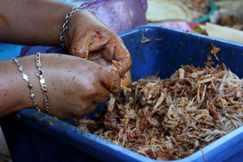 Préparation des tacos de conchinita pibill, Celestùn, Yucatan, Mexico