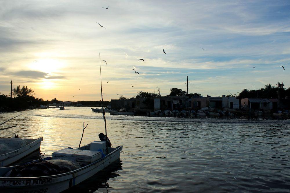 Port de pêche, Celestùn, Yucatan, Mexico
