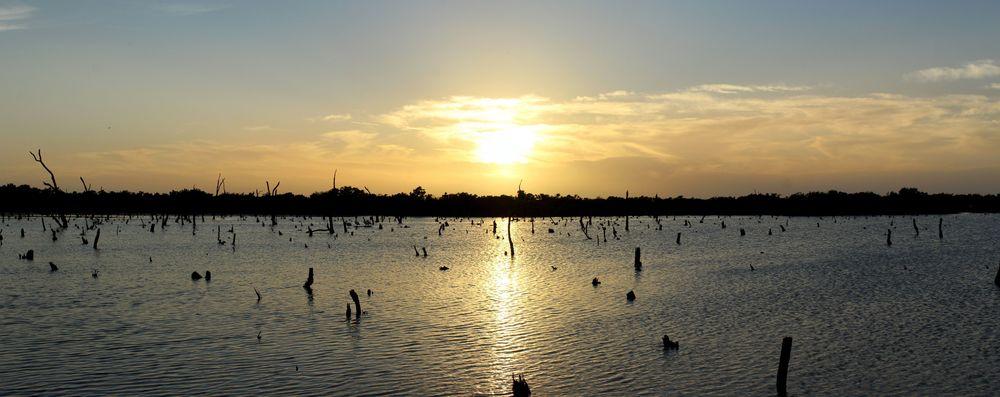 Les salines au soleil couchant, Celestùn,Yucatán, Mexico