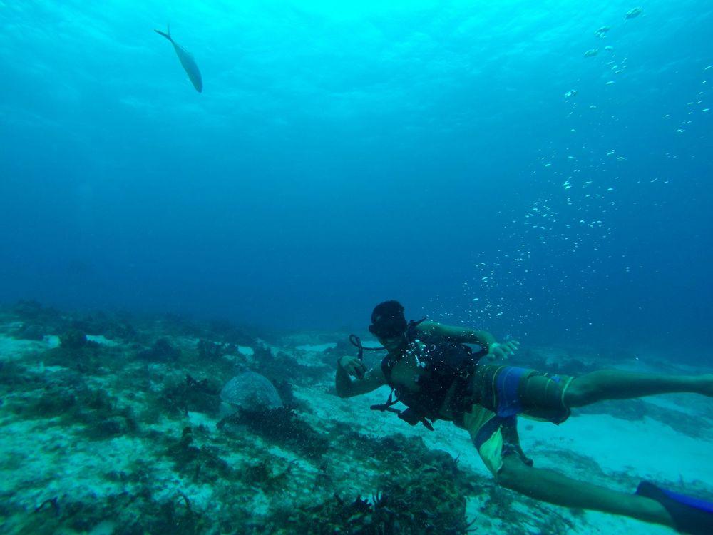 Houssem nageant avec les tortues, Cozumel, Quintana Roo, Mexico