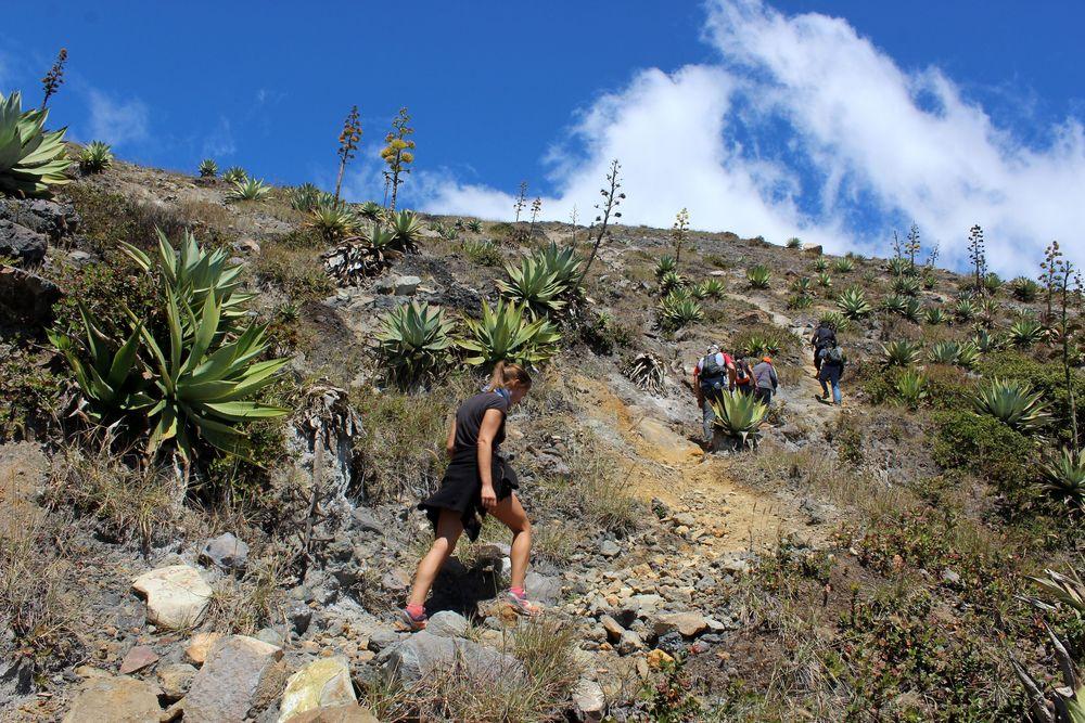 Ascension du volcan Santa Ana, Santa Ana, El Salvador