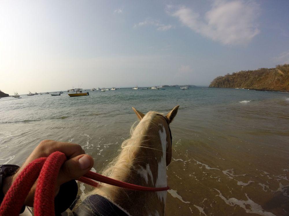 Balade à cheval, Playa Ocotal, Guanacaste, Costa Rica