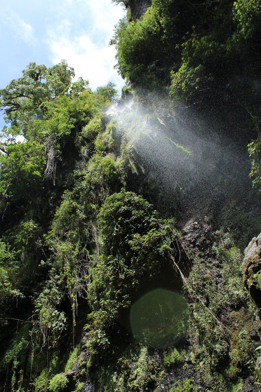 Cascade dans la forêt de Boquete, Chiriquí, Panama