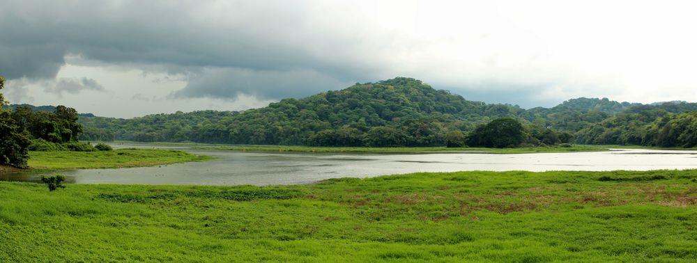 Gamboa, Vue sur le parc de Soberiana, Panama