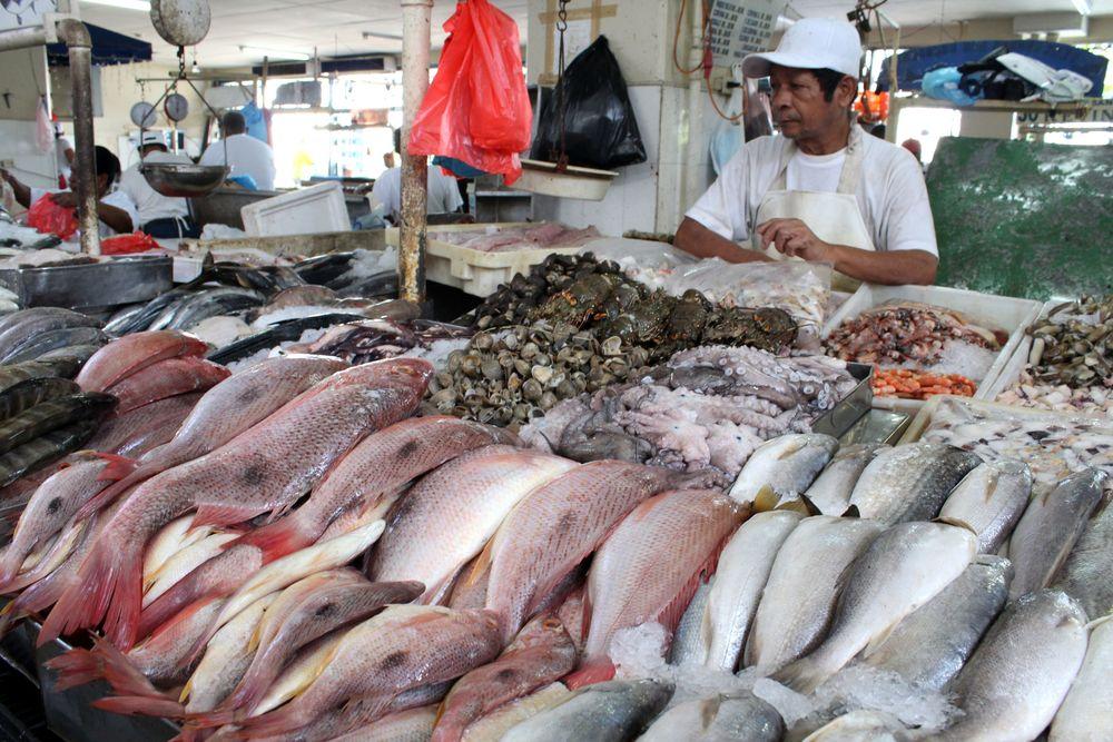 Marché aux poissons, Panama City, Panama