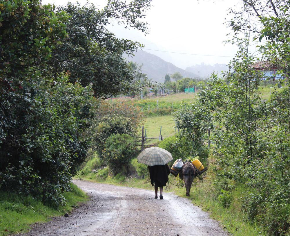 Une femme et son âne, Mongui, Boyacà, Colombie
