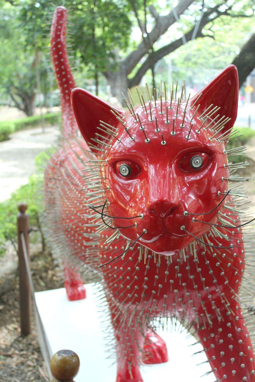 Parc à chat, Cali, Valle de Cauca, Colombie