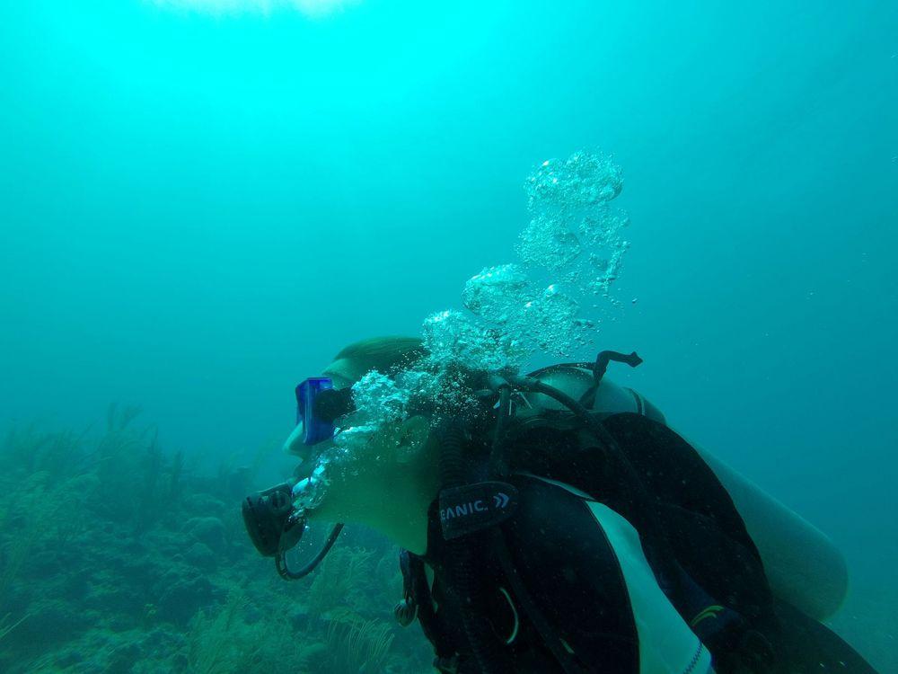 Plongée à Esmeralda Canyons, Caye Caulker, Belize