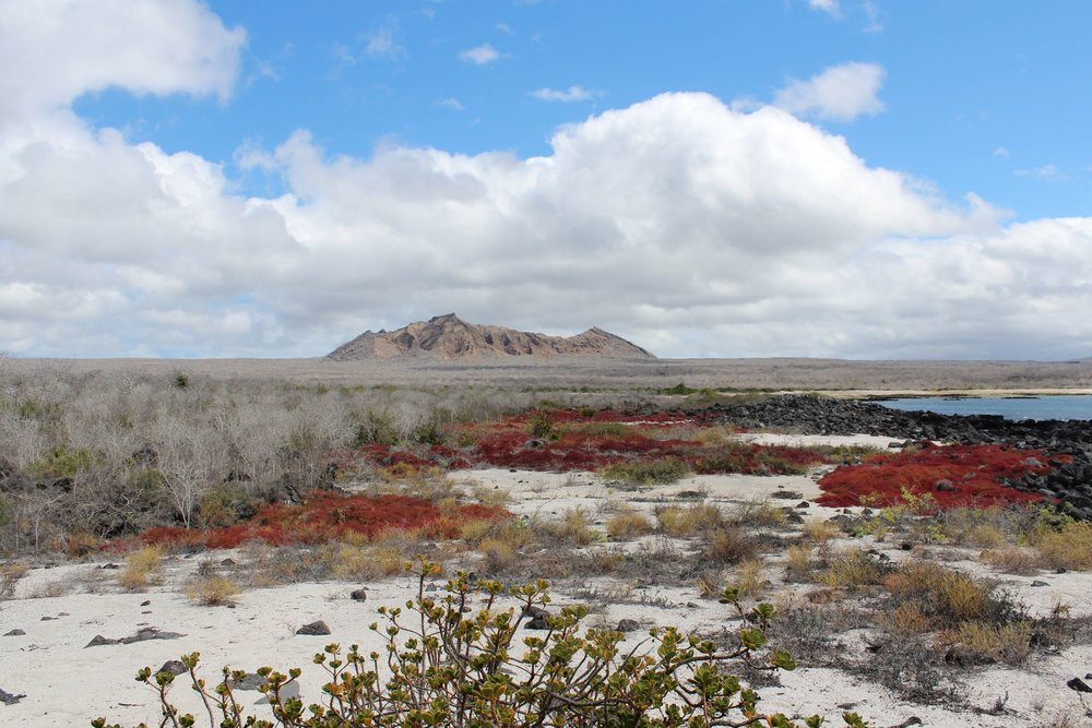 Au nord de l'ile San Cristobal, Galapagos