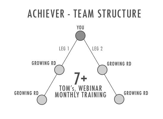 Achiever Status1.jpg