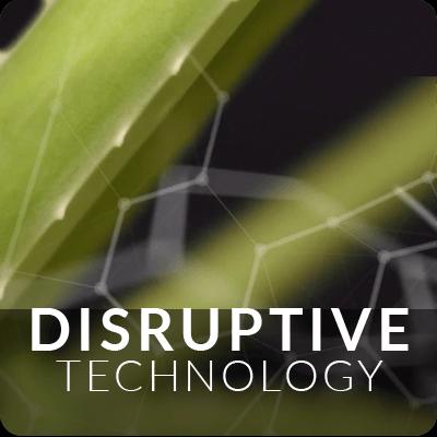 Ambrotose_Disruptive_c.png