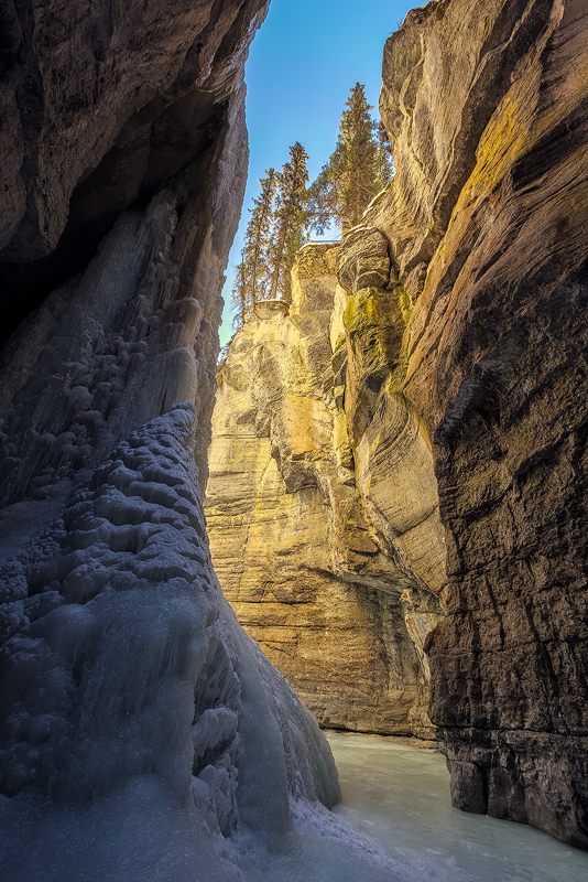 Canyon Glow - the icefall creeps into Maligne Canyon during a February visit to Alberta, Canada.