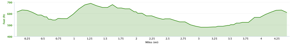 Shore Road Race Elevation