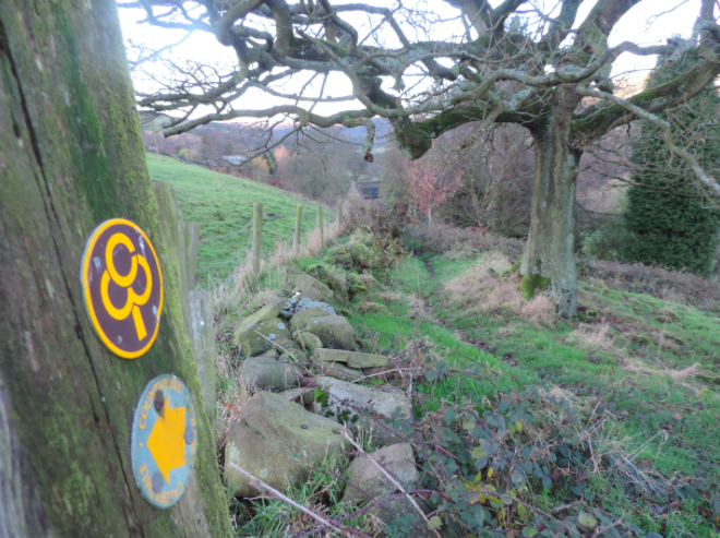 Thanks to a partnership with CROWS CO-OP and Calderdale Council the course will be fully marked with an extra 250 markers! This will make the course (coupled with the great map for back up) very easy to navigate.