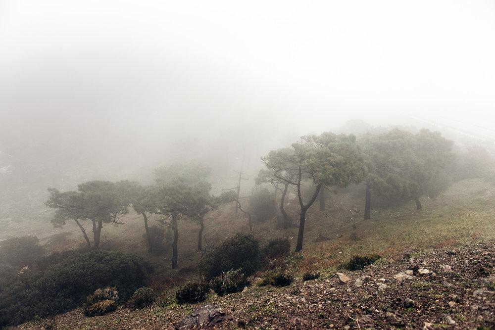 2014_VN_Marokko_002-39.jpg